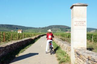 La véloroute de la voie des vignes - Côte-d'Or Tourisme © R.Krebel