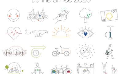vignettes-2020 (002)